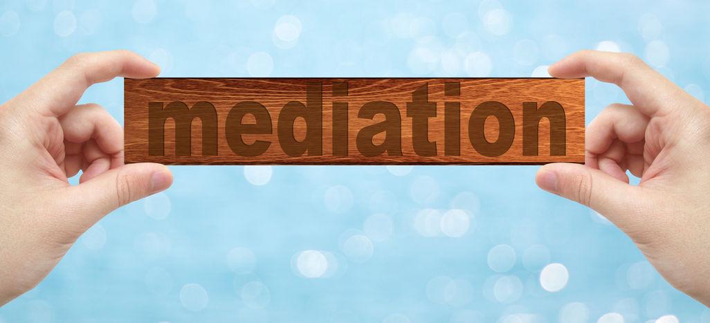 family mediator
